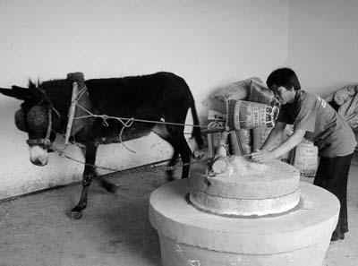 原始的石磨面粉机械设备